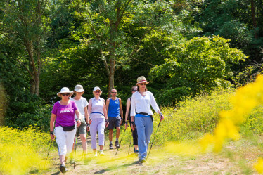 Nordic walking in Stanmer Park - August 2018